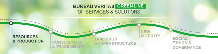 BV Green Line Ressources and Production Pillar